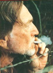 I smoked weed with Willie, couple of times