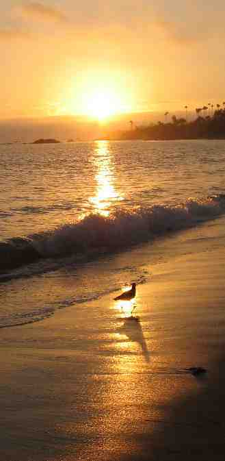 PHOTOS by ARCHURE